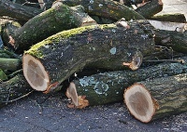 Logs for Sale Horsham