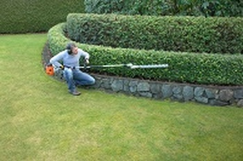 Hedge cutting Ashington